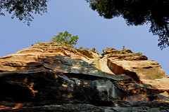 (Ombre&Lumiere) Tags: châteauduvieuxwindstein basrhin patrimoine vestiges ruines rochers vosgesdunord parcnaturelrégionaldesvosgesdunord 67