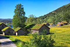 113335_AB_6041 (aud.watson) Tags: europe norway sognogfjordane sunnfjord museum oldvillage oldsettlement historicvillage woodenhouse thatchedroof route e39