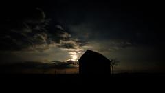 2016 10 29 - Sunset-5 (OliGlo1979) Tags: fuji luxembourg xt2 xf1655 landscape sunset horse silhouette