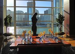 USA (Florida) Window view of Miami downtown (ustung) Tags: us america florida miami windowview waterfront cityview flowers sculpture nikon