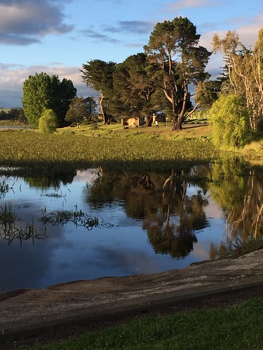 Reflection in Lake Dulverton, Oatlands, Tasmania