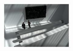 Petite plante (hlne chantemerle) Tags: sillhouettes murs tableau noir blanc ombres lumire soleil shadow light sun walls black white