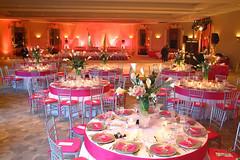 016-PinkAndWhiteRoomDecorByDavidFoxPhotographer-0032 (David Fox, Photographer) Tags: roomdecor tabledecor eventphotography gala davidfoxphotograher