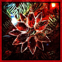 Rediscovering favorite ornaments. (Kindle Girl) Tags: takoma dc dclife washingtondc iphone macro iphonemacro holidays stillfall fall iphone365