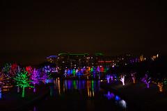 121016-22 (kara_muse) Tags: christmaslights vitruvianpark