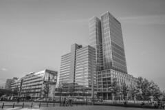 IMG_0844 (digitalarch) Tags: 네덜란드 로테르담 netherlands rotterdam