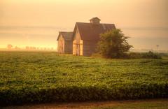 Sunlight Shines on Barn and Crib as Fog Lifts (kendoman26) Tags: morning sky fog barn rural farmland crib goldenhour soybeans sonyalpha grundycountyillinois sigma1850f2845 sonya57 sonyslta57