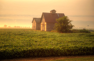 Sunlight Shines on Barn and Crib as Fog Lifts