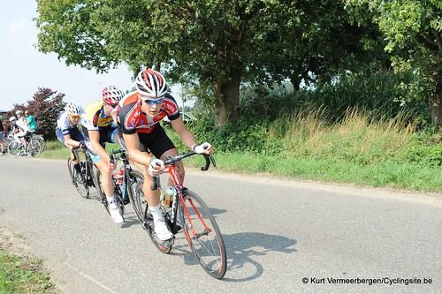Geel Oosterlo  (81)