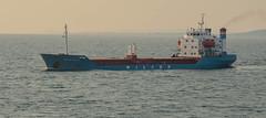 Cargo  ship Wilson Rough in resund tonight (frankmh) Tags: ships resund