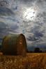 """""""Le champs ténébreux"""" (S.F PHOTOGRAPHE) Tags: france clouds photoshop jaune champs content bleu ciel arbres nuages paysage botte nord paille idée ténèbres traitement filigrane joix résultat ténébreux cauroir"""