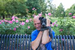 puppy (roscoepoet) Tags: puppy lawrence ku kansas dennis dennisabbot