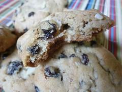 Currant, Raisin, Candied Lemon Peel, Almond Cookies (Mad Hausfrau) Tags: currants homemadecookies refrigeratorcookies almondleaves darkraisins mixincookies homemadecandiedlemonpeel