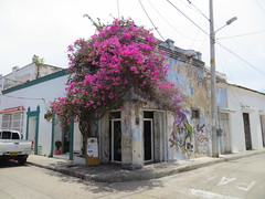Cartagena-62