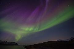 April 19th 2014 (*Jonina*) Tags: iceland ísland faskrudsfjordur fáskrúðsfjörður auroraborealis northernlights norðurljós night nótt sky himinn longexposure jónínaguðrúnóskarsdóttir april19th2014 25faves 50faves 500views 1000views 1500views