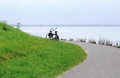 on the dike (hub en gerie) Tags: water relaxing nederland thenetherlands bikes zeeland dijk dike fietsen oosterschelde tholen easternscheldt stmaartensdijk