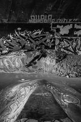 DSC_0473 (greatscott94) Tags: park canada men nikon board event skatepark skate skateboard d800 photograpy leeside sdhpics