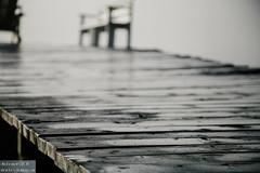 Dock (dina bennett) Tags: wood old morning misty grey dock peeling paint bokeh foggy age dew