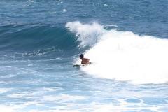 curl (BarryFackler) Tags: ocean sea nature water island hawaii marine surf pacific wave surfing spray pacificocean shore foam tropical bigisland curl aquatic kona boogieboard kailuakona 2014 konacoast hawaiicounty hawaiiisland kailuabay westhawaii northkona barryfackler barronfackler daylightmindcoffeecompany