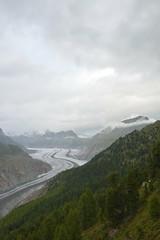 Le glacier d'Aletsch vu de la forêt. (Azariel01) Tags: trees mountain alps clouds forest montagne alpes schweiz switzerland suisse glacier arbres nuages forêt valais aletsch 2014 aletschwald riederfurka aletscharena forêtdaletsch