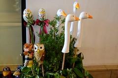 Hanekaelad (anuwintschalek) Tags: summer salzburg june austria sommer decoration goose gans altstadt oldtown hani suvi vanalinn 2015 getreidegasse d7k nikond7000 gnsehals 18140vr hanekaelad