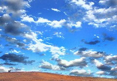 (Christopoulos) Tags: deer hills clouds sky overlay silhouettes