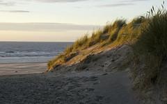 Dune (Arend Jan Wonink) Tags: duin dune duinpad strandopgang ameland buren nes frysln beach strand spiaggia plage noordzee northsea nordmer wadden waddeneiland waddengebied noordzeekust frankherbert