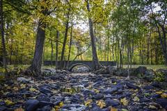 Rocky Stream (jsleighton) Tags: algonquin park bridge stream arch fall trees rocks leaves newburgh landscape