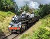 Tяotsky's Bяidge (4486Merlin) Tags: 75078 brstd4mt460 england europe exbr heritagerailways keighleyworthvalleyrailway northeast railways steam transport unitedkingdom haworth westyorkshire gbr