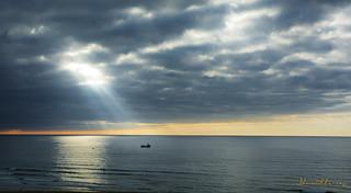 El Barco pesquero.- Fishing boat Nº144