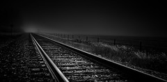 Tracks in the fog (Explored 10/29/16) (qualistat) Tags: your best shot 2016 yourbestshot2016 ybs2016 yourbestshot2016blackandwhite yourbestshot2016bw railroad tracks bw railroadtracks railway