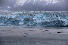IMG_0499 (EliaZane) Tags: alaska glacier mendenhall sea ocean ice blue cruise