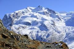 Monte Rosa (JohannesMayr) Tags: monte rosa switzerland schweiz wallis zermatt schnee gletscher grenze italien italy glacier douforspitze mountain berg 4000er