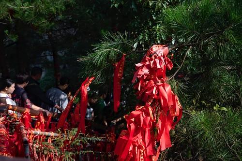Zahngjiajie Park I