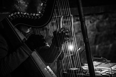 Music in the Streets (aedphotography) Tags: portrait night quebec street streetphotography bw blackandwhite musician harp music