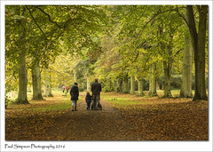 Out for a stroll (Paul Simpson Photography) Tags: naturalworld nature naturephotos peoplehavingawalk photoof photosof imagesof imageof paulsimpsonphotography sonya77 sonyphotography automne autumn autumncolour normanbypark scunthorpe october2016 trees leaves fall