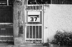 37 (35mm) (jcbkk1956) Tags: 37 gate wall thonglo bangkok thailand street film 35mm analog rangefinder yashica yashinon ministerd ilfordpan100 ilford manualfocus worldtrekker texture
