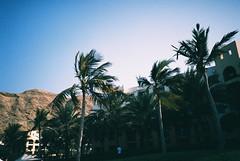 Muscat (cranjam) Tags: lomo lca lomography film slide xpro kodak elitechrome100 sultanateofoman oman middleeast shangrilabarraljissah shangrila hotel beach spiaggia palmtrees palme montagne mountains