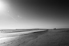 """Friends"" (helmet13) Tags: d800e raw bw people women beach pacificocean sunshine walk sealbeach california silence peaceful space aoi heartaward peaceaward 100faves world100f platinumpeaceaward level3worldpeacehalloffame"