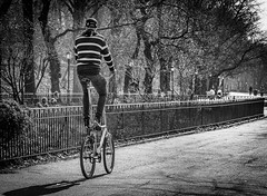 On a High Horse (Mildred Alpern) Tags: bicycle rider outdoors garden blackandwhite monochrome nyc riversidepark trees pathway