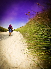 Dühnen Landschaft Nordsee Fokus Effect Fokus On Foreground Fokus Auf Den Vordergrund Fokus Object Beach Nordsee Grasshopper Grassland Sand Dune Dunes Dünenlandschaft Sky And Clouds Sky And Sand Sand Full Length Flying Outdoors People Walking Nature Travel (nicospecial) Tags: fokuseffect fokusonforeground fokusaufdenvordergrund fokusobject beach nordsee grasshopper grassland sanddune dunes dünenlandschaft skyandclouds skyandsand sand fulllength flying outdoors people walking nature traveldestinations rearview oneperson vacations kitetoy
