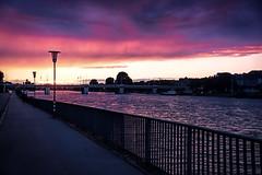 Heidelberg at dusk