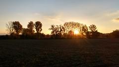 Sonnenuntergang im Selztal zwischen Wahlheimer Hof und Hahnheim
