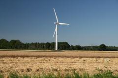 20130720_IMG_0194 (anriro96) Tags: elements heemsen nienburg feld ernte gras getreide blau blue sky rohrsen weser sun summer