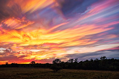 Colourful Mess (Matt Molloy) Tags: mattmolloy timelapse photography timestack photostack movement motion colourful sky sunset clouds lines paths countryside field trees grass ontario canada landscape lovelife