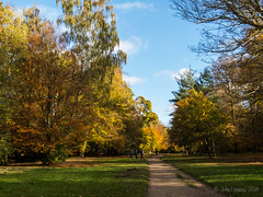 The Royal Park (Julia Livesey) Tags: autumn virginiawater englefieldgreen england unitedkingdom gb