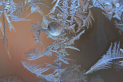 Frost on a Window (EyeoftheImage) Tags: amazing beautiful bestshotoftheday breathtaking capturing capture discovery depthoffield dof exploring earth exquisite explore exposure forest forests globe greatphotographers greatnature landscape landscapes light majestic macro newengland ngc nature picturesque powerful rural reflections reflectionshots reflection water winter winterscene frozen ruby10