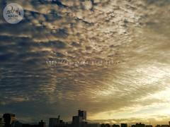(finalistJPN) Tags: autumn sky sunshine daylight cloud pattern design pictaro presentingpicturesandphotos ppap discoverjapan visitjapan townphoto nationalgeographic discoverychannel japanguide stockphotos thankyoufriends