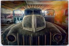 Ford (Edy Schreiner) Tags: ford autos marode vergessen