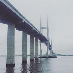 foggy bridge in Brunswick, GA